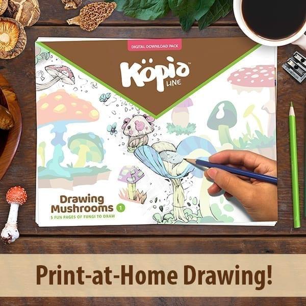 Kopialine how to draw mushrooms Kopiography kopiographic
